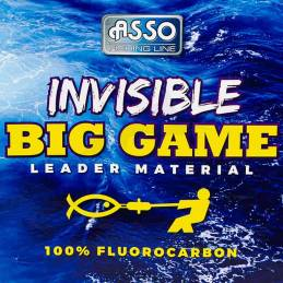 Asso Fluorocarbon Invisible Big Game 20m