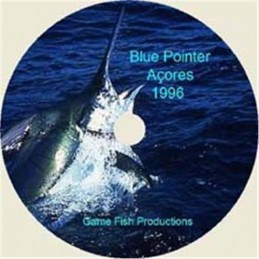 Blue Pointer
