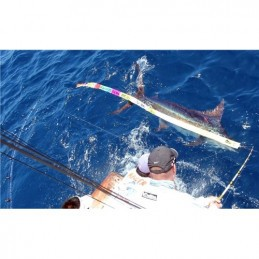 Release ruler Blue Marlin